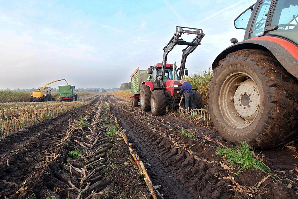 Сельскохозяйственные выставки 2018 года